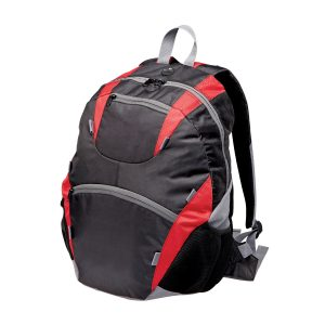Chicane Backpack at Coast Image Wear